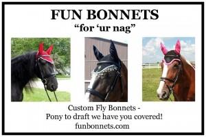 FUN Bonnets